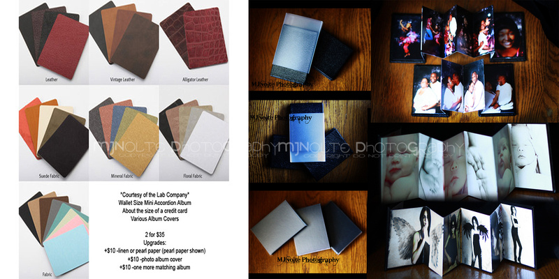Mjnolte Photography Print Album Investment 2012 Wallet Size
